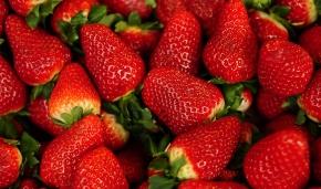 Anställd fick gulsot av jordgubbar