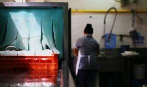 Bättre skydd för migrantarbetare utreds
