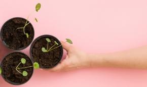 Åtta steg för att odla upp en egen fackklubb