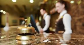 Branschen tror på ökad sysselsättning