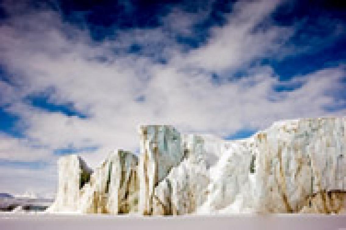 Säsongsjobb i isbjörnsland